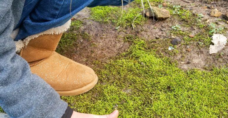 girl touching moss sensory play nature's touch
